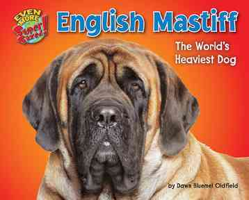 English Mastiff By Oldfield, Dawn Bluemel